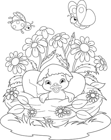nestling: Duckling Coloring Page Illustration