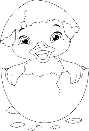 nestling birds: Duckling Coloring Page Illustration