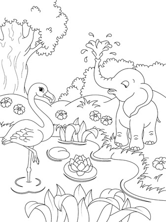 proboscis: Animals Coloring Page Illustration