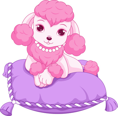 Glamorous poodle resting on a pillow