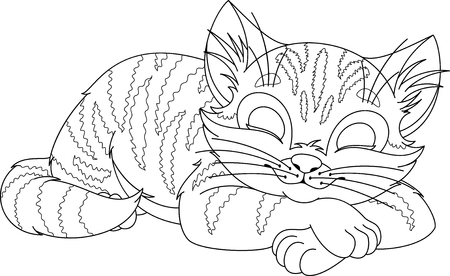 Cat Sleeps Coloring Page Stock Vector