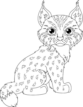 Lynx Coloring Page