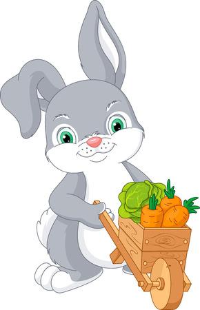 Rabbit with wheelbarrow full of vegetables Illustration