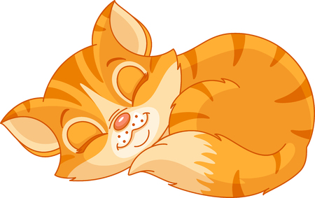 sleeping kitten Vector illustration.