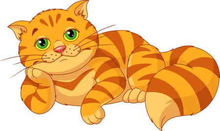 Traurige fette Katze Standard-Bild - 87430545