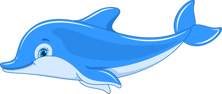 Swimming Dolphin isolated on white background Banque d'images - 115415827