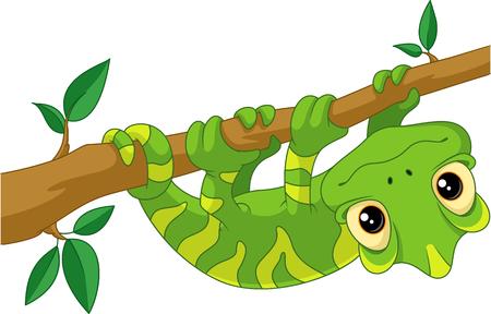 Camaleonte sul ramo Vettoriali
