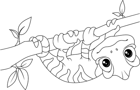 Chameleon on Branch Coloring Page  イラスト・ベクター素材