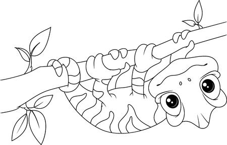 Chameleon on Branch Coloring Page Illustration