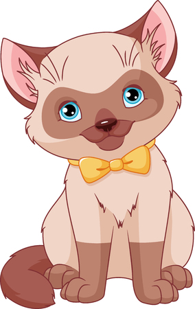 Cute Siamese Kitten Ilustração