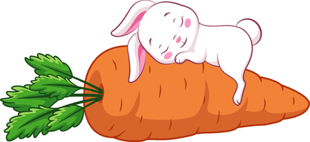 Rabbit sleeps on a carrot Banque d'images - 123564952