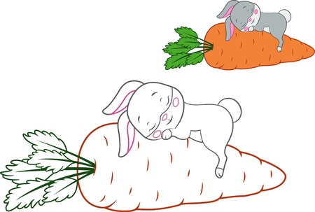 Sleeping Rabbit with colored outline for coloring page Banque d'images - 123564947
