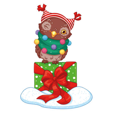 Christmas owl with gift on white background
