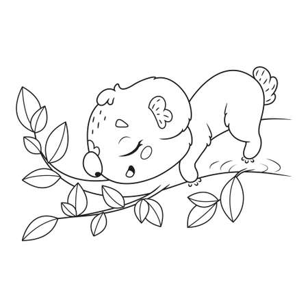 Sleeping koala on a tree branch coloring page