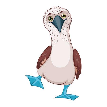 Blue footed booby vector cartoon illustration