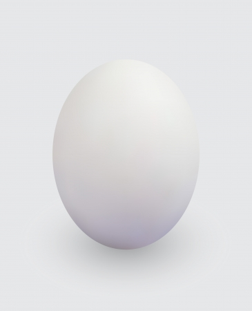 Realistic egg of a light colour on a gray background.