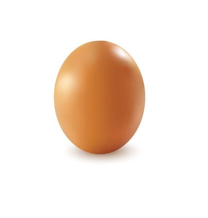 Egg realistic orange on a white background.