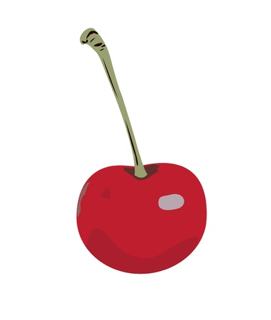 Cherry red with a green stalk on a white background. Illustration