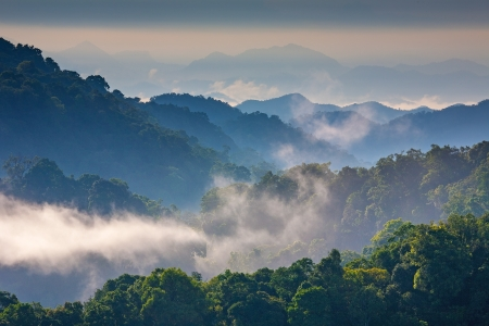 Morning Mist at Tropical Mountain Range,This place is in the Kaeng Krachan national park, Thailand