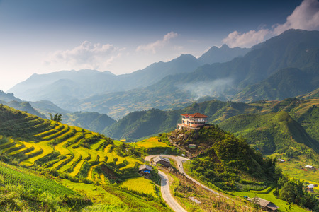 asian house plants: Hilltop village, Muong Hoa valley terraced fields, Sa Pa Town, Vietnam