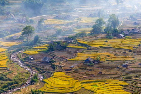 terrasses de champs de riz � Sapa Vietnam photo