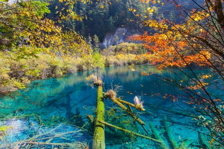 beautiful inverted image in jiuzhaigou national park  photo