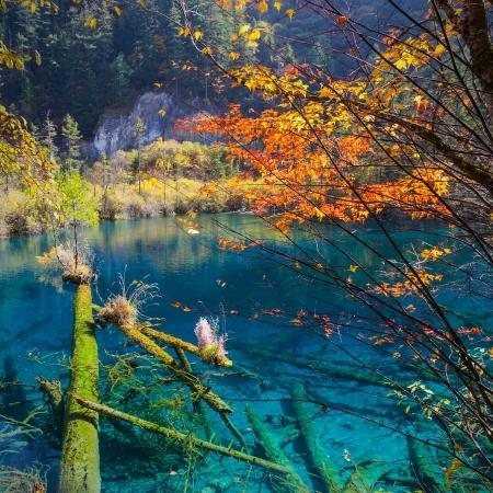 fairyland: beautiful inverted image in jiuzhaigou national park
