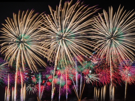 multiples: Fireworks of multiples colors