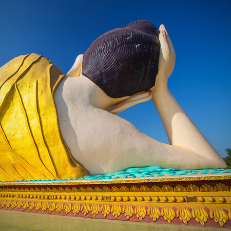 banian tree: back side of  Giant reclining  Buddha statue(100 mt.), Bago, myanmar.
