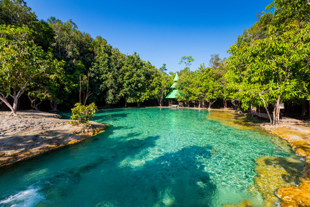 에메랄드 풀 태국 크라비에서 맹그로브 숲에서 보이지 않는 풀이다 스톡 콘텐츠