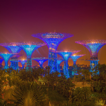 Garden By The Bay August 2014 singapore botanical garden images & stock pictures. royalty free