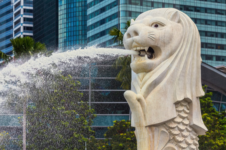 SINGAPORE - AUG 30: The Merlion fountain in front of the Marina Bay Sands hotel on August 30, 2014 in Singapore. Merlion is a imaginary creature with the head of a lion, seen as a symbol of Singapore