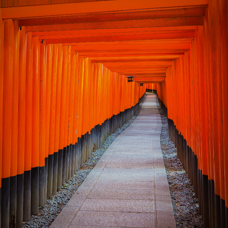 straddle: Fushimi Inari Shrine on in Kyoto, Japan. Thousands of torii gates straddle a network of trails. A walking path leads through a tunnel of torii