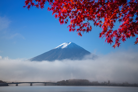 japanese fall foliage: Mount Fuji at Kawakuchiko lake in Japan