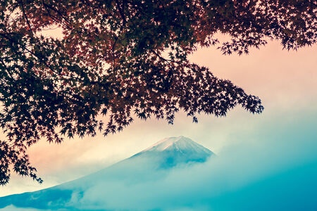 Beautiful Mt Fuji behind the maple tree from Lake Kawaguchi,Yamanashi Prefecture, Japan.in a vintage style with cross-processed colors. photo