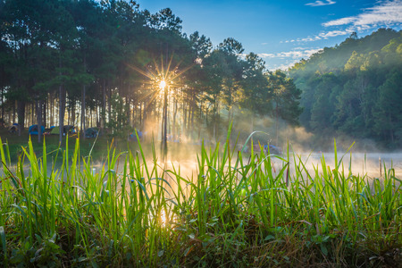 In the morning, Pang Ung Forestry Plantations, Maehongson Province, North of Thailand Stock Photo