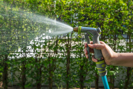 Watering green garden with hose by left female hand Stock Photo