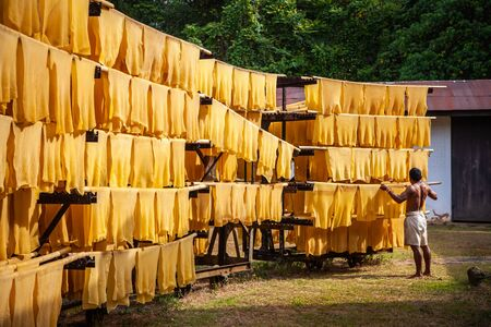Export industries of Thailand Rubber Post ,Rubber production, Baking process timber with solar energy. Reklamní fotografie