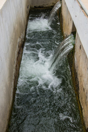 sedimentation: Perforated launders water outlet in sedimentation tank