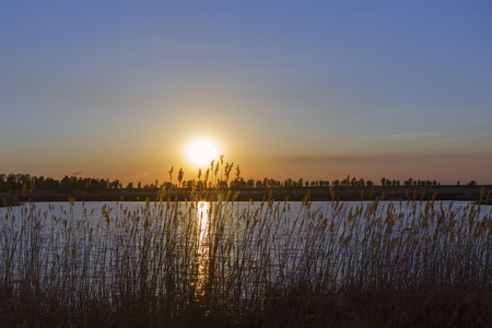 sunset on the grass river. 免版税图像