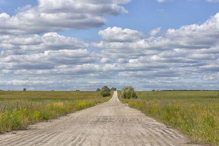 road cloud field. 免版税图像