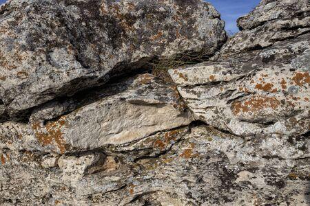 rocks rocks covered with moss. 免版税图像