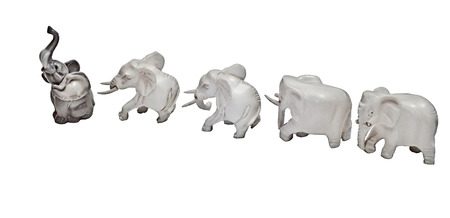 Individualist. Figures of elephants go a system on a white background. One of them completely differs from the others.