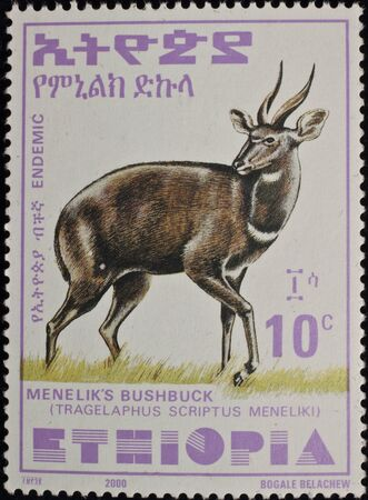 The brand of mail of Ethiopia is published in 2000 with the image of an antelope. Editorial