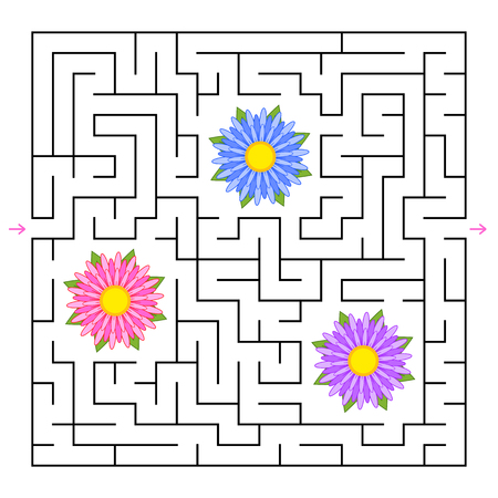 A square labyrinth. Collect all the flowers and find a way out of the maze. Simple flat isolated vector illustration
