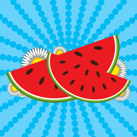 Red watermelon slices and flowers on a striped blue background. Illustration
