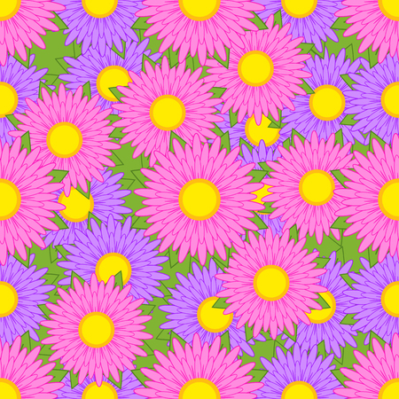 Seamless pattern from purple and pink asters with green leaves on a green background