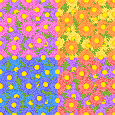 A set of seamless patterns from asters of different colors yellow, pink, blue, orange, purple