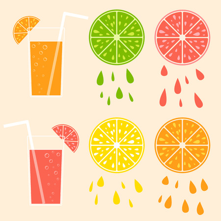 Set of colored isolated mouth-watering fruits. Juicy, bright, delicious tropical food. Lime, lemon, grapefruit, orange, cocktail with straw. Simple flat vector illustration.