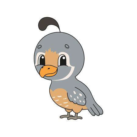 Quail. Cute flat vector illustration in childish cartoon style. Funny character. Isolated on white background. Ilustração